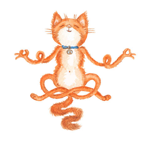 Vector illustration of hand drawn meditating red cat isolated on white