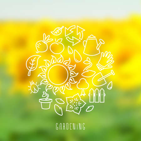 sunflower field: Vector illustration of round vignette of gardening symbols and icons, outline linear drawing with copy space, on blurred sunflower field summer background Illustration