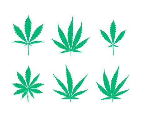 Vector cannabis leaves set - green plant isolated on white, medical and farm marijuana silhouettes.