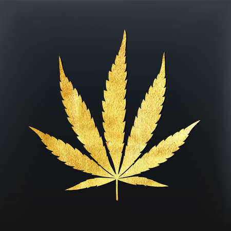 narcotic: Vector cannabis leaf illustration - golden glitter foil plant silhouette isolated on black, medical marijuana indica sort.
