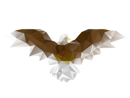 Vector illustration of triangles and low poly geometric figures in shape of eagle bird isolated on white background.