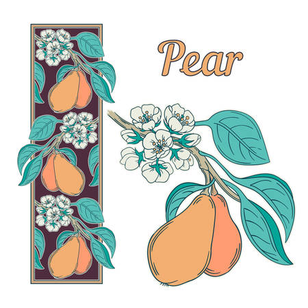 illustration of a pear tree twig and vertical ornament in retro Victorian style, flowers bloom and ripe fruits, art nouveau style decorative botanical illustration isolated on white
