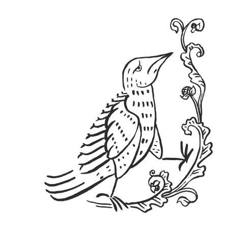 Mittelalterliche Kunsttaube Europäische Mönche beleuchtete Manuskripte Tuschezeichnung Vintage Blumenvignette mit Vogelvektorillustration isoliert auf weiß