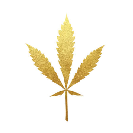 Gold cannabis leaf vector - metallic golden paint foil silhuette of marijuana ruderalis leaf on white background, yellow shiny weed sign Illustration