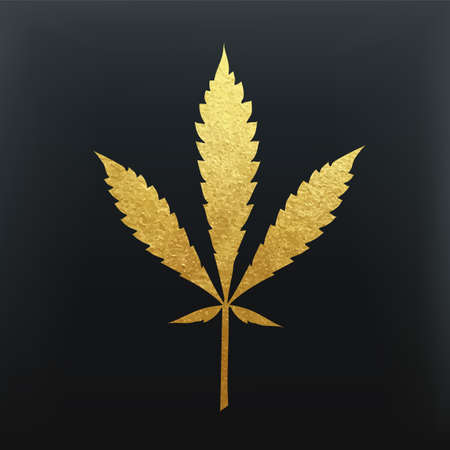 Gold cannabis leaf vector - metallic golden paint foil silhuette of marijuana ruderalis leaf on black background, yellow shiny medical weed sign