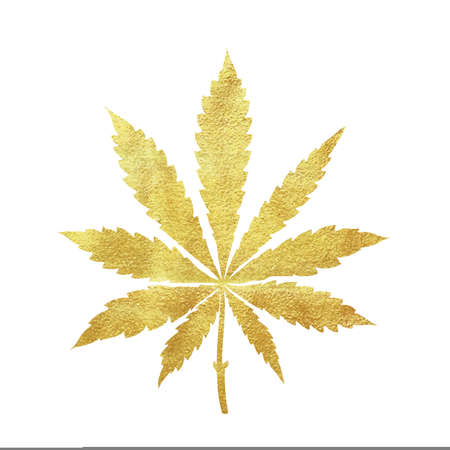 Gold cannabis leaf vector - metallic golden paint foil silhuette of marijuana sativa leaf on white background, yellow shiny medical weed sign Ilustração