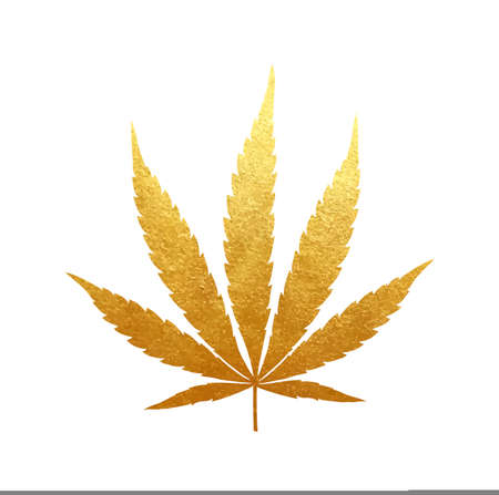 Gold cannabis leaf vector - metallic golden paint foil silhuette of marijuana indica leaf on white background, yellow shiny medical weed sign