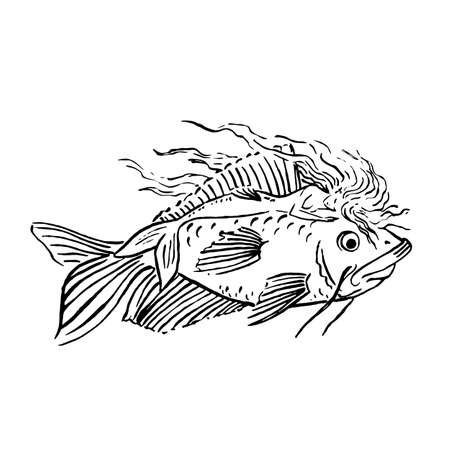 Vector Mermaid illustration black isolated on white, coloring page or fairy tale illustration, mermaid sleeping and riding giant fish or whale Archivio Fotografico - 133052354