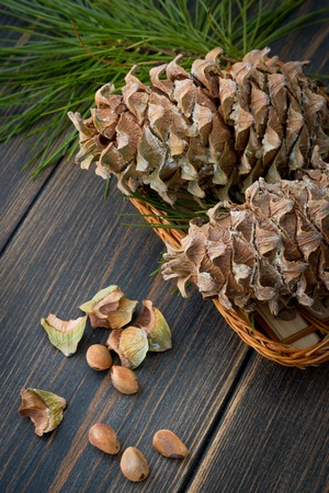 Spruce resinous pine-cones in wicker basket with pine nuts and pine needle branch on dark wooden background  Banco de Imagens