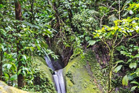 caribbean landscape