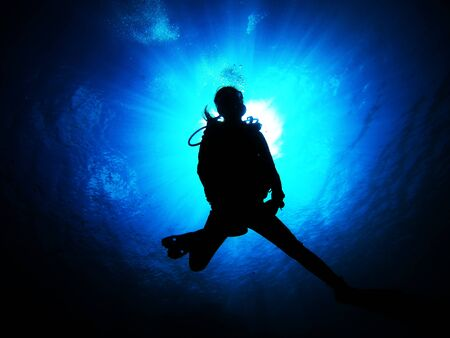 Women who enjoy diving in the clean sea