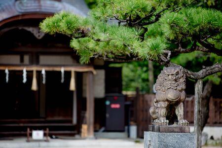 Sumiyoshi Shrine in Fukuoka is the home of all Sumiyoshi Shrines in Japan