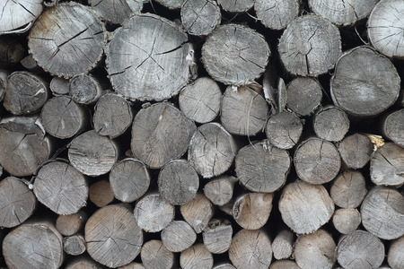 primary product: log, wood, bark, brown, pile, background, surface, heap, grain, tree, rough, aged, deforest Stock Photo