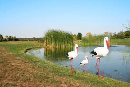 stork family figures Stock Photo - 10578116