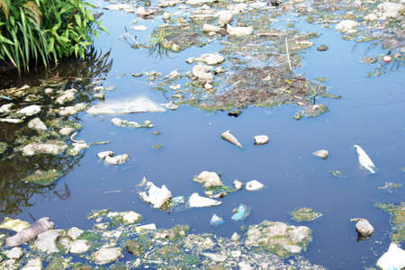 polluted river: Water pollution Stock Photo