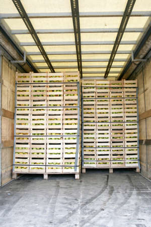 Storage space in a truck full of apples Standard-Bild