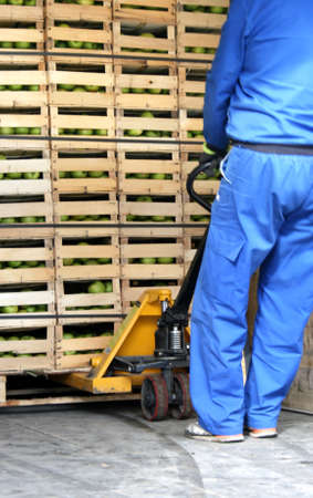 Storage space in a truck full of apples, worker pulling out fruit Standard-Bild