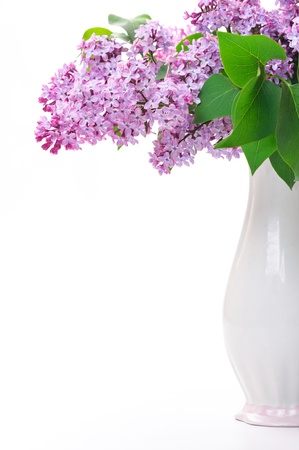 Lilac flower in vase photo