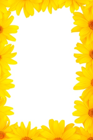 The beautiful frame of yellow flowers Stock Photo - 9970699