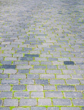 paving stones and grass texture perspective Stock Photo