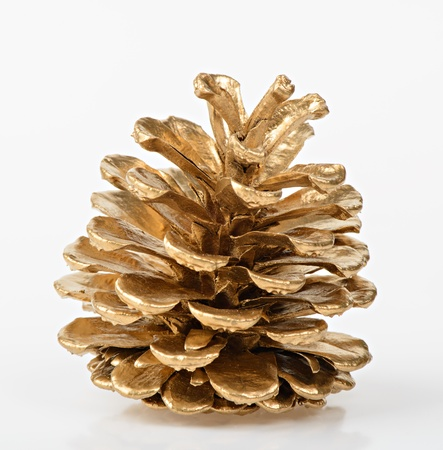 Golden Pine cone on white background