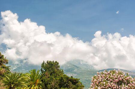 serbia and montenegro: Adriatic landscape - trees, sky and mountain, Montenegro, Budva Stock Photo