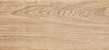 oak plate texture Stock Photo - 20342694