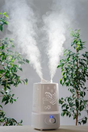humidify: ultrasonic humidifier in the house. Humidification. Vapor