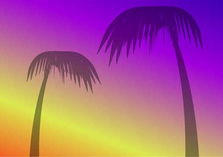 palmtrees: palmeras