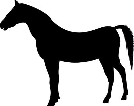 horse black silhouette