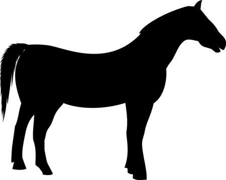 black farming horse silhouette