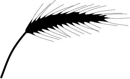 black grain silhouette