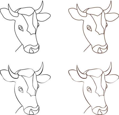 Cow head Illustration