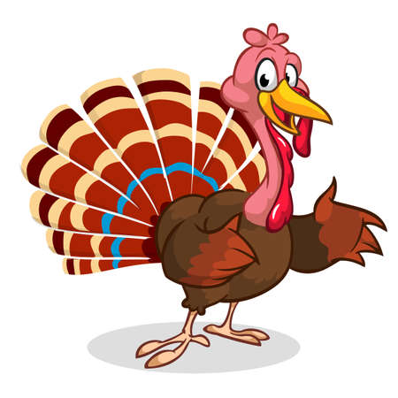 Cartoon Thanksgiving turkey presenting isolated on white. Vector