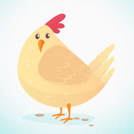 chick: Cartoon big fat hen isolated  on a white background. Vector illustration of a chicken