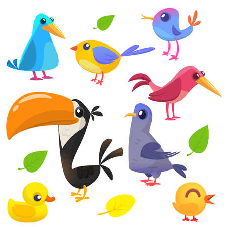 Cute Cartoon Birds Collection Set Of Colorful Vector Illustration On White Background