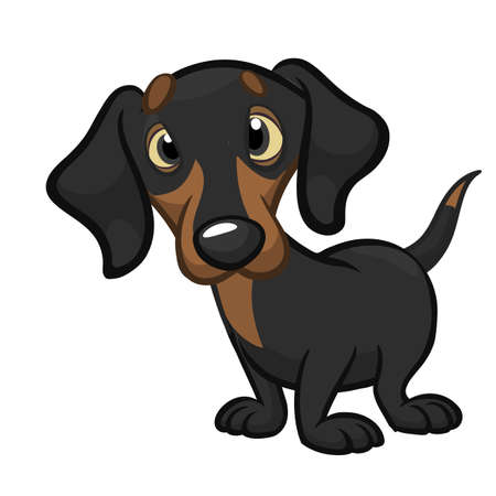Cartoon Cute Dachshund Dog. Vector Illustration