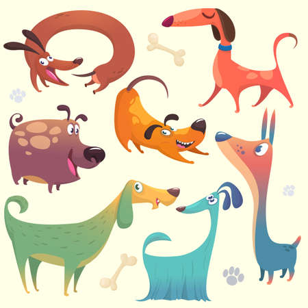 Cartoon dogs set. Vector illustrations of dogs.  Retriever, dachshund, terrier,pitbull, spaniel, bulldog, basset hound, afghan hound, borzoi
