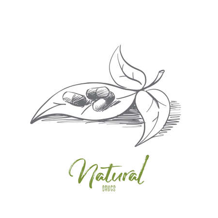 Vector hand drawn natural drugs concept sketch. Pills with natural medicine on plant leaf. Lettering Natural drugs