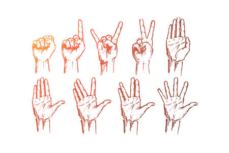 Vector hand drawn Hand signs concept sketch. Set of human palms with different gestures meaning different signs. Illustration