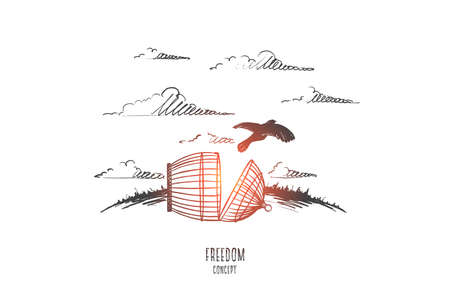 Freedom concept. Hand drawn bird escaping from the prison. Cell broken isolated vector illustration.
