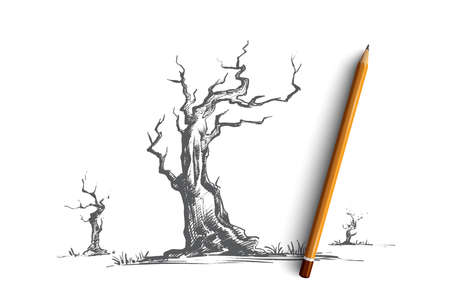 Dead trees concept. Hand drawn dry tree without leaves, old wood, ecology disaster isolated vector illustration. Vectores