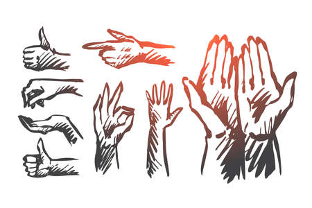 Hand, palm, human, finger, gesture concept. Hand drawn human hands shows different gestures concept sketch. Isolated vector illustration.