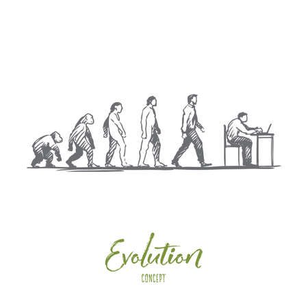Evolution, businessman, programmer, primitive concept. Hand drawn figures of primates and humans, evolution concept sketch. Isolated vector illustration.