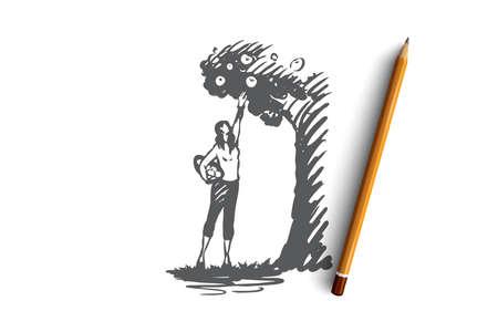 Harvesting, woman, apple, tree, garden concept. Hand drawn woman harvesting apple concept sketch. Isolated vector illustration.