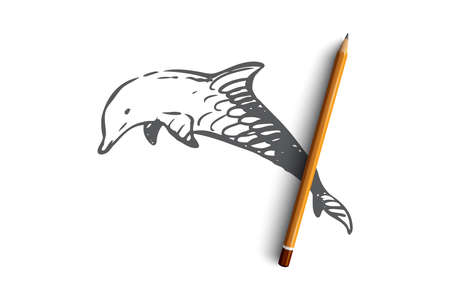 Dolphin, sea, mammal, wildlife, nature concept. Hand drawn dolphin in the sea concept sketch. Isolated vector illustration. 일러스트