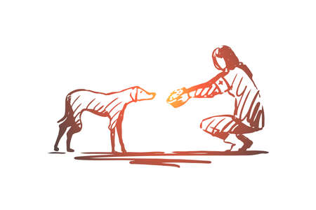 Volunteer, street, animal, help concept. Hand drawn volunteer feeding street animal concept sketch. Isolated vector illustration.