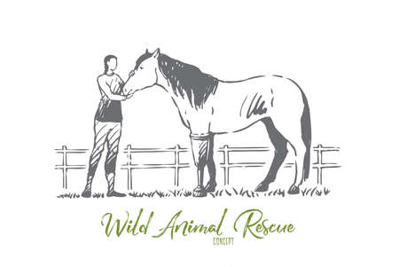 Animal, horse, health, prosthesis, help concept. Hand drawn horse with leg prosthesis. Wild animal rescue concept sketch. Isolated vector illustration.