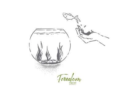 Pequeños peces de colores saltando en la pecera, la mano suelta los peces, la mascota doméstica salta en el acuario de cristal con algas