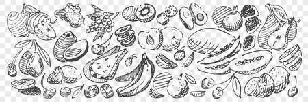 Hand drawn fruits doodle set